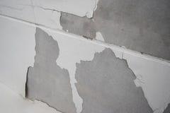 Överdriven fuktighet kan orsaka form- och skalningsmålarfärgväggen royaltyfria foton