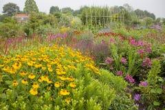 Överflöd av färgrika blommor i trädgård Arkivbilder