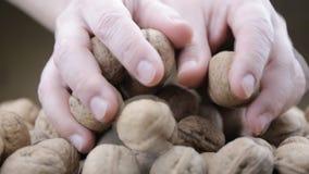 Överflöd av valnötter på en tabell lager videofilmer