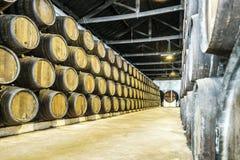 Överflöd av vinfat i Porto område, Portugal Arkivbilder