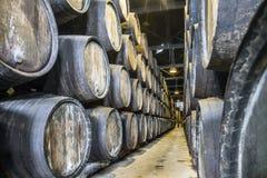 Överflöd av vinfat i Porto område, Portugal Royaltyfri Fotografi