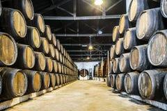 Överflöd av vinfat i Porto område, Portugal Royaltyfri Foto