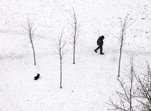 Överflödande snöfall Arkivfoton