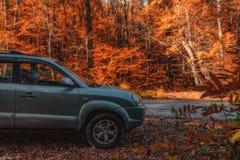 Övergång Hyundai Tucson i höstskog royaltyfria foton