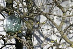 Övergången till sommartid, ankomsten av våren, klockan på bakgrunden av filialer med att blomma knoppar på ett ljust soligt arkivfoton