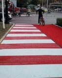 Övergångsställe- och cykelspår i Tirana royaltyfri bild