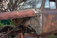 Övergav rostiga gammala åker lastbil Arkivbild