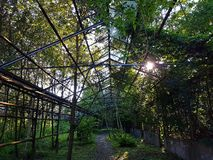 Övergav växthus Royaltyfri Bild