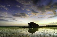 Överge det lilla huset i det mellersta risfältfältet och reflexionen under soluppgång med dramatiska moln och färgrik himmel arkivbild