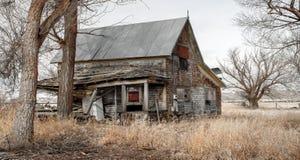 Överge lantbrukarhemmet med ogräs och träd i lantliga Idaho arkivfoton