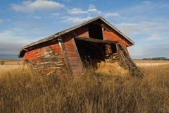 Övergett gammalt skjul i gräs- fält i nedgång Arkivfoto