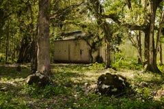 Övergett hus i det mest florest Royaltyfri Bild