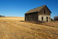 Övergett hus i skördat vetefält Arkivfoton