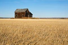 Övergett hus i skördat vetefält i nedgång Arkivbild