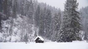 Övergett litet wood hus under snöfall arkivfilmer