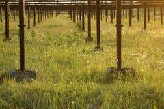 Övergett stads- industriellt växthus för corroid för växande grönsaker arkivbild
