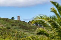 Övergett torn på den branta kullen med palmblad i förgrunden royaltyfri fotografi