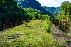 Övergett välva sig järnvägsbron över floden förkläden Tkurchal Tkvarchelli Östliga Abchazien arkivbilder