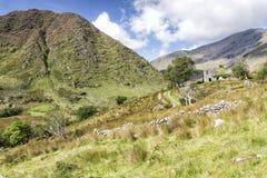 Övergiven bergstuga i Irland Fotografering för Bildbyråer