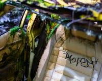 Övergiven bil i Forest Overgrowth arkivfoto
