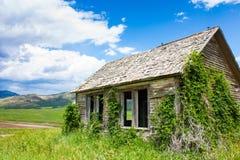 Övergiven bondgård i Idaho arkivbild