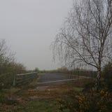 Övergiven bro med trädet royaltyfria foton