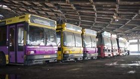 Övergiven bussflotta Arkivbild
