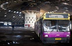 Övergiven bussflotta Royaltyfri Bild