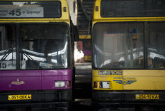 Övergiven bussflotta Royaltyfria Foton