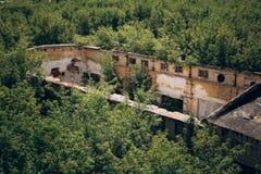 Övergiven byggnad av en fabrik eller ett lager utan taket, på alla sidor som är bevuxna med skogen Arkivbilder