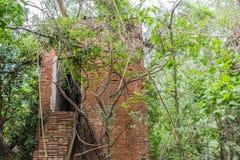 Övergiven byggnad fördärvar in i skog royaltyfri fotografi