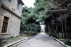 Övergiven byhusbyggnad i den Baku Botanical trädgården Inget i parkera med träd Vår royaltyfri foto