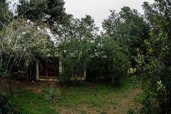 Övergiven byhusbyggnad i den Baku Botanical trädgården Inget i parkera med träd Vår royaltyfri bild