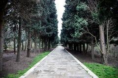 Övergiven byhusbyggnad i den Baku Botanical trädgården Inget i parkera med träd Vår arkivbild