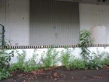 Övergiven fabrik, delar av bransch som är utsatta till klimatet Arkivbilder