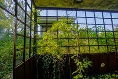 Övergiven gammal förstörd industrianläggning Fotografering för Bildbyråer