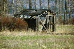 Övergiven gammal kabin Royaltyfri Fotografi