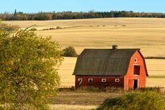 Övergiven gammal ladugård på grunden av kullen Arkivfoto