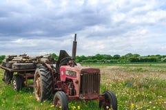 Övergiven gammal röd lantgårdtraktor i äng Arkivbilder
