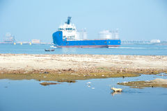 Övergiven hund på förorenat den vattenområde och kusten Arkivfoto