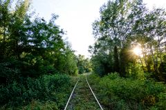 Övergiven järnväg i skogen Arkivfoto