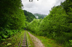 Övergiven järnväg i sommarbergskog med foliar träd i Gaucasus, Mezmay Arkivfoto