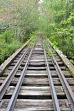 Övergiven järnvägbro Fotografering för Bildbyråer