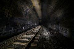 Övergiven järnvägtunnel - Pennsylvania royaltyfri fotografi