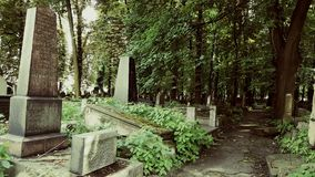 Övergiven judisk kyrkogård royaltyfri bild