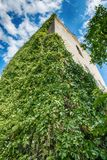 Övergiven kyrka i Banostor från Serbien Royaltyfria Bilder