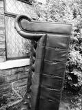 Övergiven lädersoffa i trädgård Arkivbilder