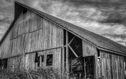 Övergiven ladugård, svartvit bild Fotografering för Bildbyråer