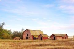 Övergiven lantgård med röda ladugårdar Arkivbilder
