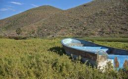 Övergiven liten fiskebåt i mexicanska grässlättar royaltyfria foton
